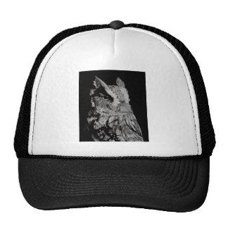 Una maravilla observada gorras