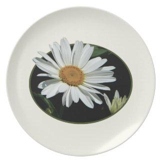 Una margarita blanca platos para fiestas