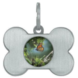 Una mariposa de monarca en camino placas de mascota