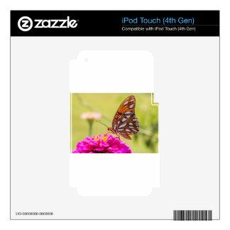 Una mariposa del verano iPod touch 4G calcomanías