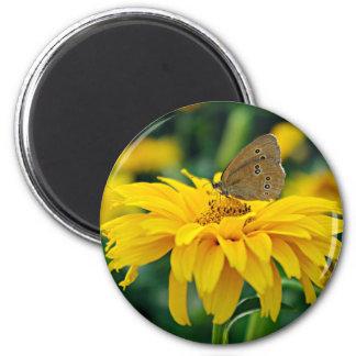 Una mariposa en un imán amarillo de la flor