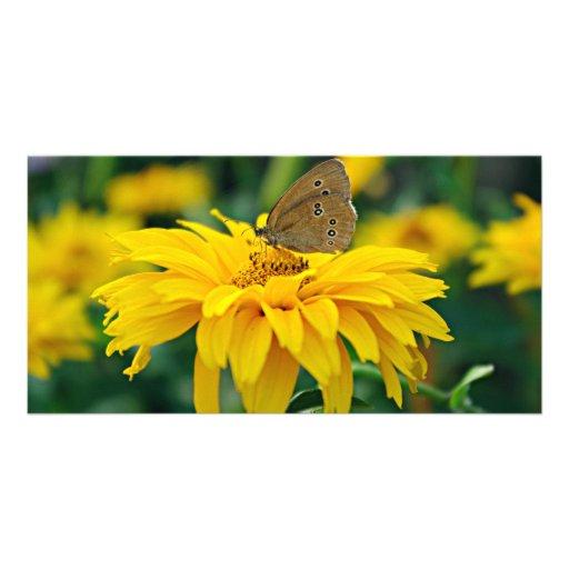 Una mariposa en una tarjeta amarilla de la foto de tarjeta personal con foto