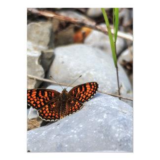 """Una mariposa multicolor invitación 5.5"""" x 7.5"""""""