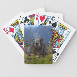 Una marmota en paraíso en par del nacional del baraja de cartas bicycle