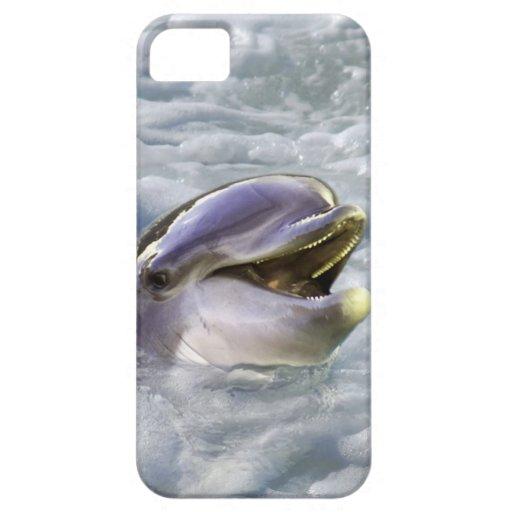 Una mejor sonrisa de los delfínes iPhone 5 carcasas