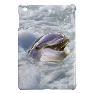 Una mejor sonrisa de los delfínes