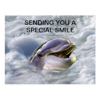 Una mejor sonrisa de los delfínes postales