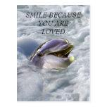 Una mejor sonrisa de los delfínes tarjeta postal