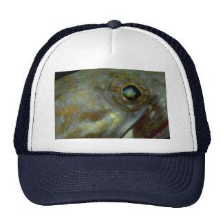 Una mirada cercana en el ojo de un buceador del Ca Gorras