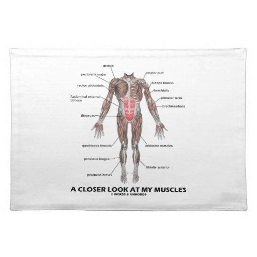 Una mirada más atenta en mis músculos (anatomía/an mantel