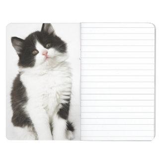 Una mirada que se sienta del gatito joven en la cuaderno grapado