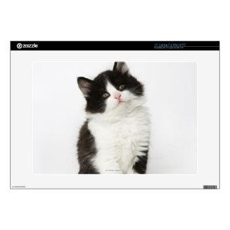 Una mirada que se sienta del gatito joven en la portátil calcomanías