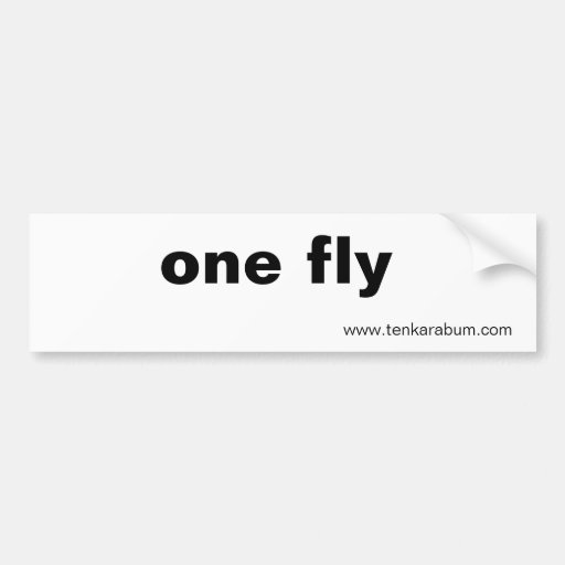 una mosca, www.tenkarabum.com pegatina de parachoque