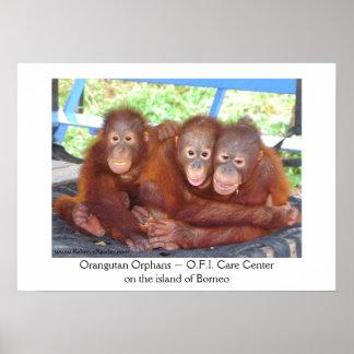 una muchedumbre de 3 no - bebés del orangután póster