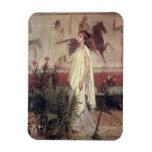 Una mujer griega, 1869 (aceite en lona) rectangle magnet