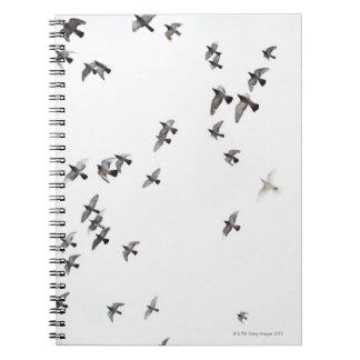 Una multitud de pájaros está volando en el cielo libro de apuntes con espiral