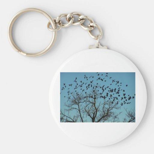 una multitud de pájaros llaveros
