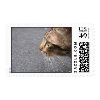 Una ojeada sello postal