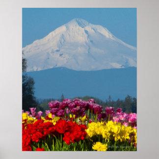 una opinión comprimida la capilla, Oregon y el tul Posters