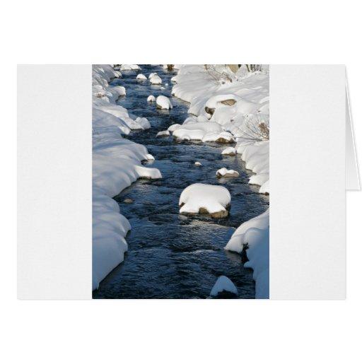 Una opinión del río Nevado Felicitacion