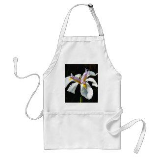 Una orquídea con los pétalos blancos delantales
