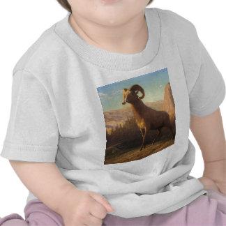 una oveja de montaña rocosa, Bierstadt Albert Camisetas