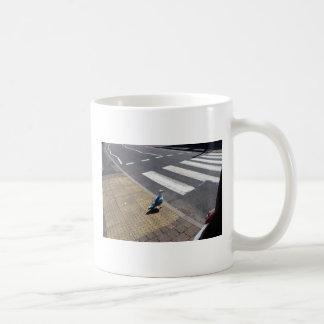 Una paloma en el paso de peatones tazas de café