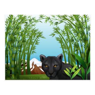 Una pantera negra en el bosque de bambú postal