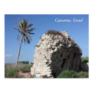 Una pared antigua con una palmera Caesarea Israe Tarjetas Postales