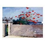 Una pared en Nassau de Winslow Homer Tarjetas Postales