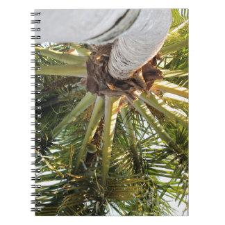 Una partida tropical libro de apuntes