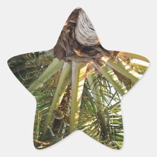 Una partida tropical pegatina en forma de estrella