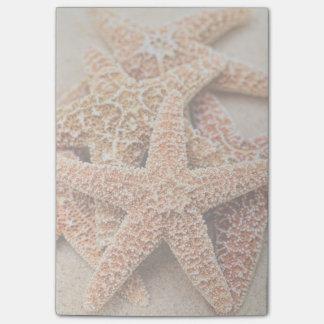 Una pila de estrellas de mar grandes del azúcar post-it notas