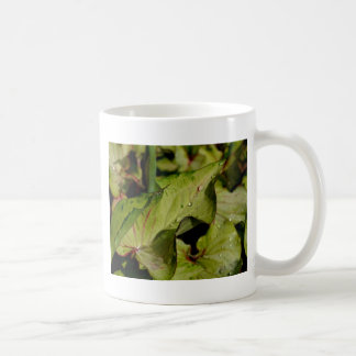 Una piscina de hadas taza de café