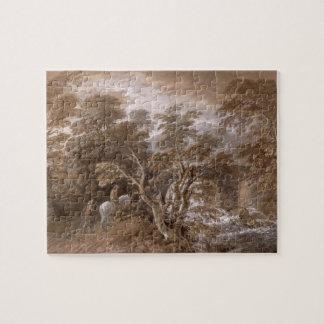 Una piscina del arbolado con las rocas y las plant rompecabezas con fotos