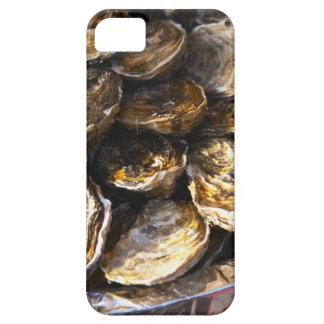 Una placa de ostras iPhone 5 carcasas