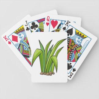 Una planta baraja de cartas