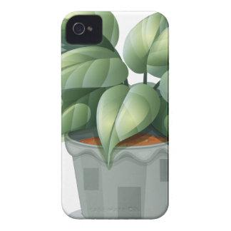 Una planta en un pote Case-Mate iPhone 4 fundas