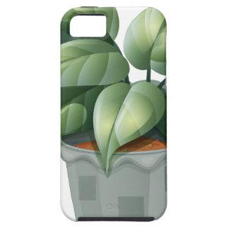 Una planta en un pote funda para iPhone 5 tough