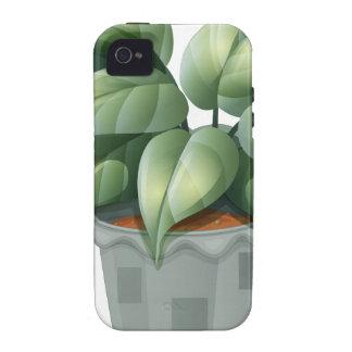 Una planta en un pote iPhone 4/4S fundas