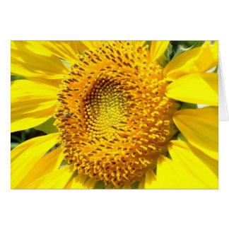 Una poca abeja de la miel tarjeta pequeña