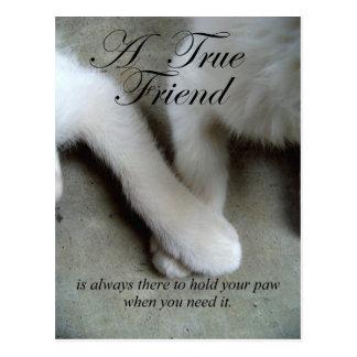 Una postal del amigo verdadero