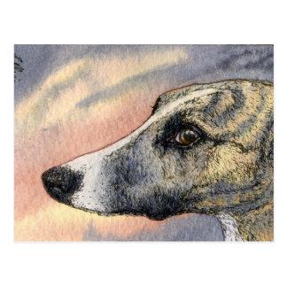Una POSTAL tímida hermosa del perro