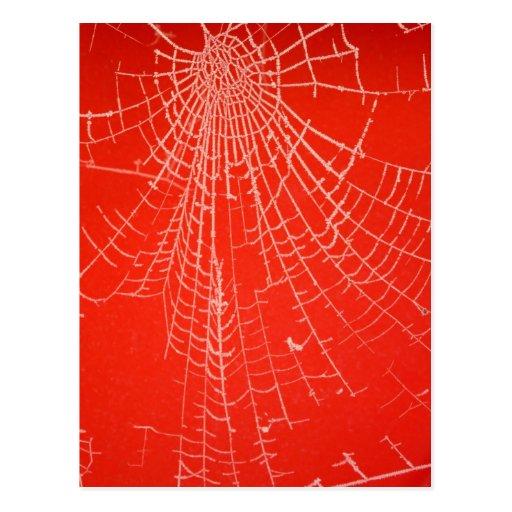 Una postal vieja del Web de arañas