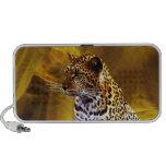 Una postura del leopardo iPhone altavoz