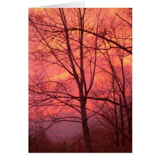 Una puesta del sol del invierno felicitación