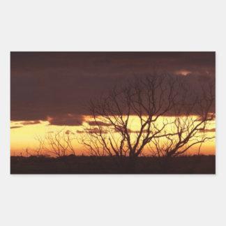 Una puesta del sol del pantano por las pimientas pegatina rectangular