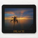 Una puesta del sol pacífica alfombrilla de ratones