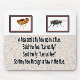 Una pulga y una mosca de la diversión en un tubo tapetes de ratones
