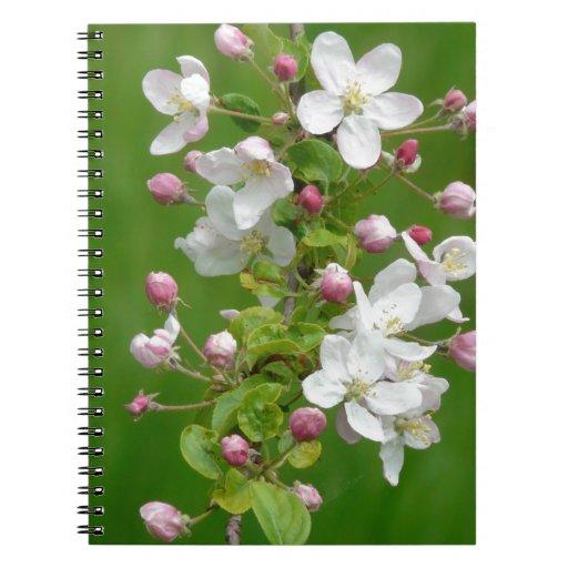 Una rama del flor de Apple Cuaderno
